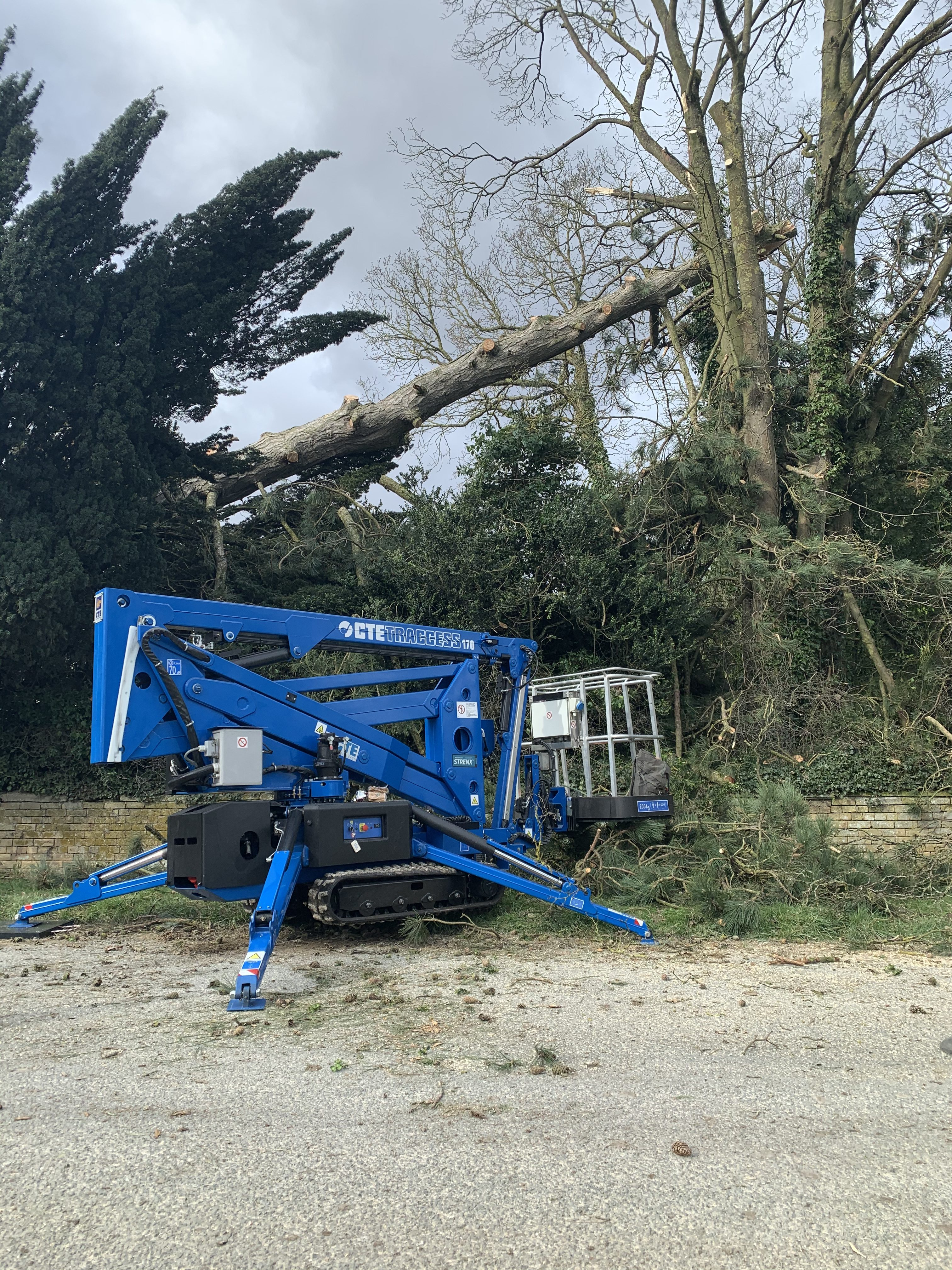 Some recent works using our access platform to remove windblown trees along with some rigging.